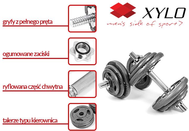 Hantle żeliwne Xylo 2x20 kg