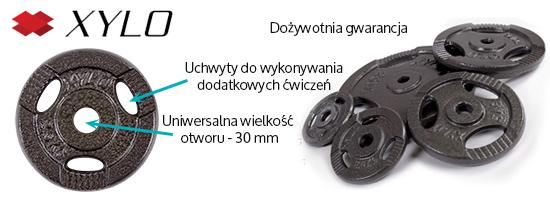 Obciążenie żeliwne 10 kg Xylo
